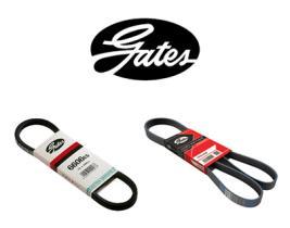 Correas Micro-V Gates  Gates